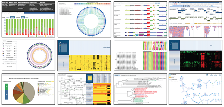 A grid of various data visualizations